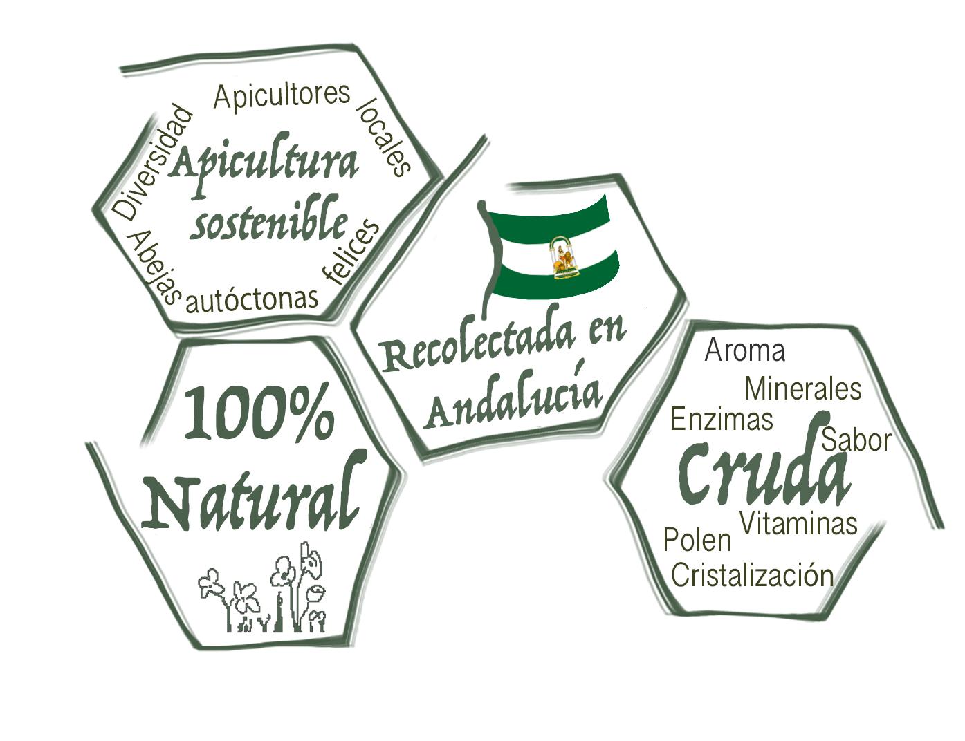 Andalucia local natural LocalMiel